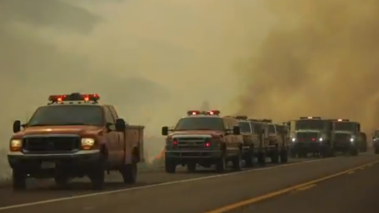 Firefighter killed after battling California wildfire sparked at gender reveal party