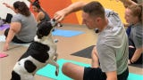 These dog lovers had a chance to do yoga with these pups from Gulf Coast Humane Society