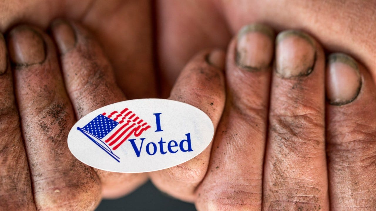 After record 4.8 million Floridians vote by mail, Republicans look to overhaul system 2