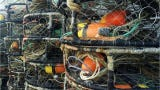 Fishing for Energy, is a national program to salvage lost or discarded ocean fishing gear and then transports the items to recycling partners.