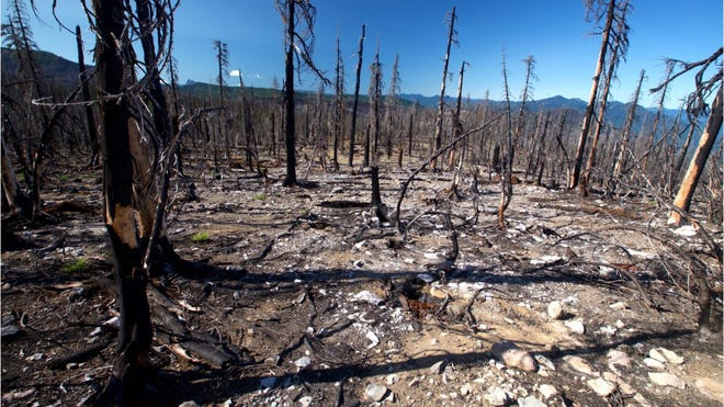 Blm Wildfire Fuel Breaks Six Western States