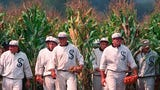 "If you build it, they will come. 30 years after ""Field of Dreams"" romanticized the idea of baseball on an Iowa farm, baseball is making it a reality."