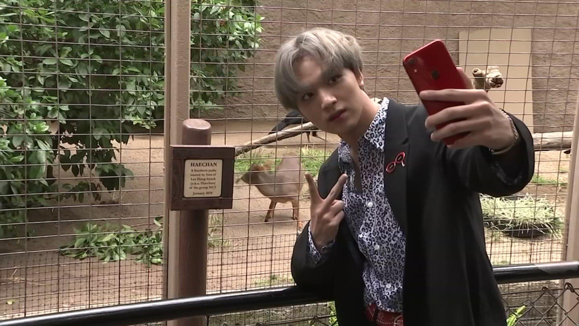 K-pop group NCT 127 visits the LA Zoo