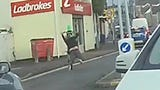 Dash cam footage captured the moment a daredevil attempted a wheelie. Buzz60's Sean Dowling has more.