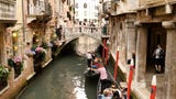 Those probably weren't what sight-seers wanted to see! Two tourists in Venice were fined heavily for stripping down and swimming in the canals of the floating city.