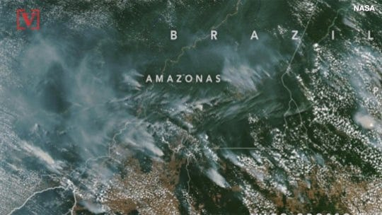 Why is the Amazon rainforest on fire?