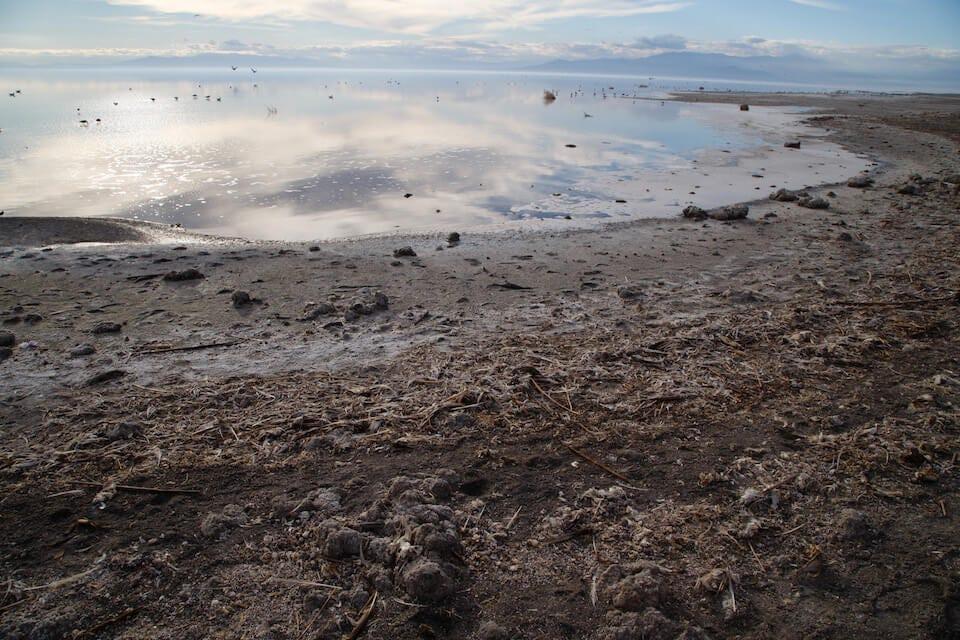 Salton Sea: California far from solutions as Salton Sea crisis looms