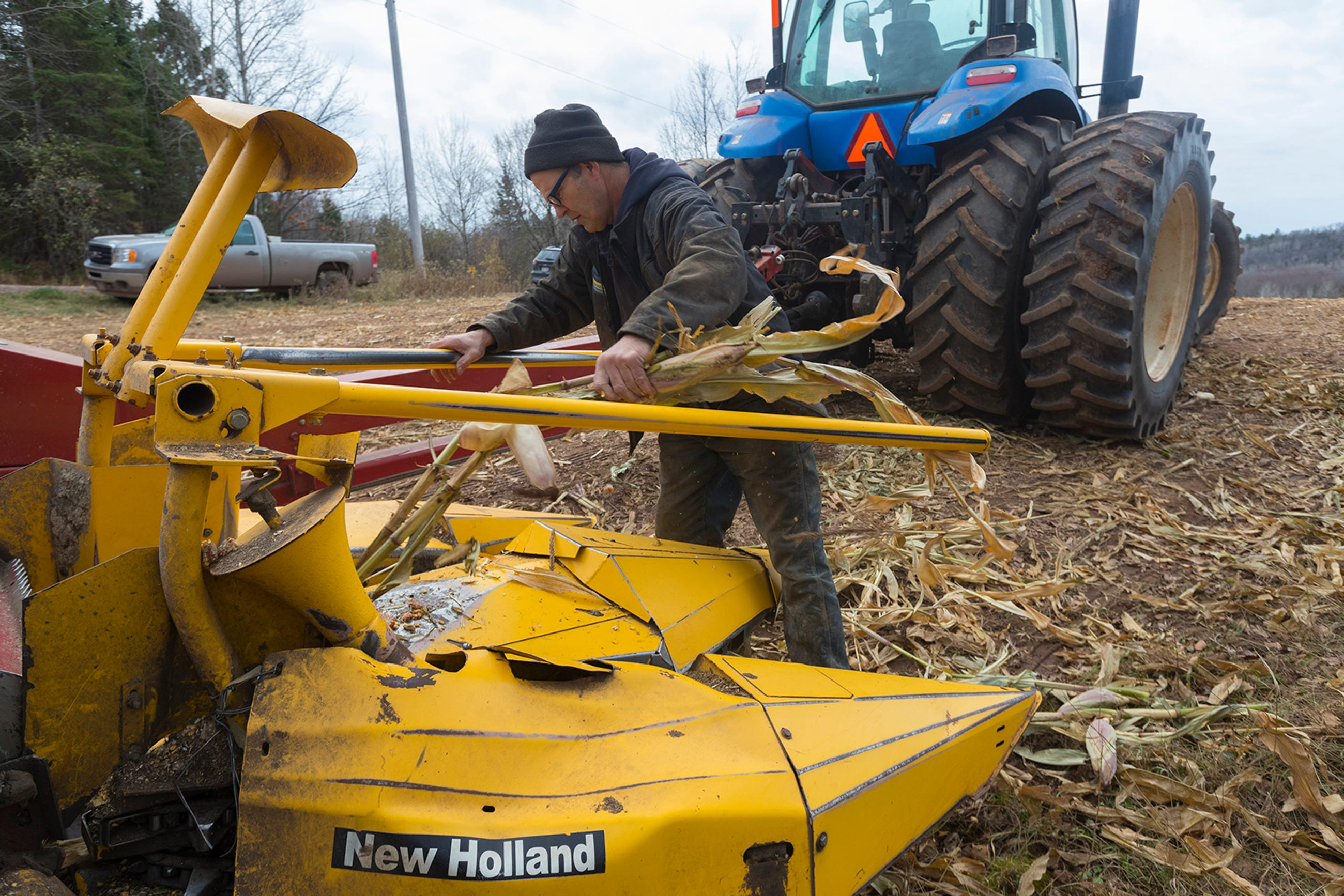 Mike Thewis clears corn from a harvester on his family's dairy farm near Mellen, Wis. in November 2019.