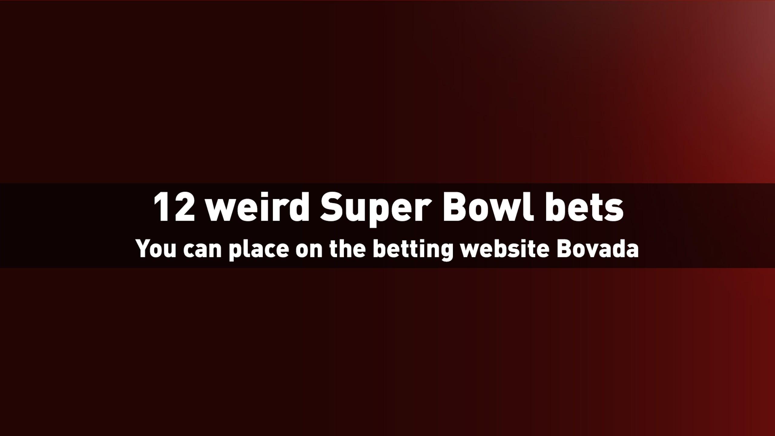 Weird bets on super bowl horse betting options