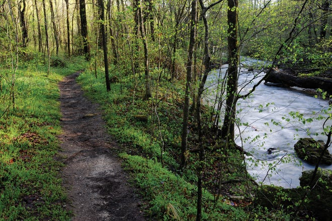 Brush off the winter blues, lace up your hiking shoes and hit one of the many trails in the Ozarks.
