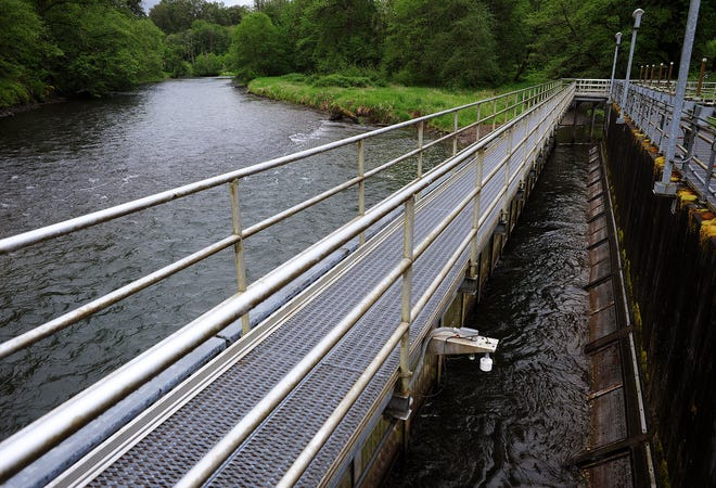 The North Santiam River flows near the middle intake area at the Geren Island Water Treatment Facility near Stayton.