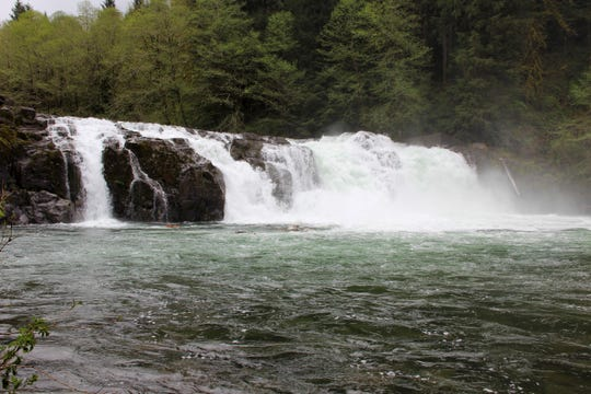 Salmon Falls County Park on the Little North Santiam River.