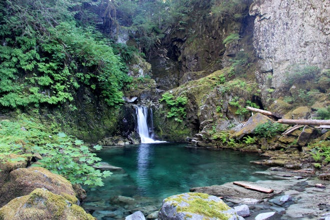 A waterfall and swimming hole on Opal Creek are only reachable with some off-trail hiking.