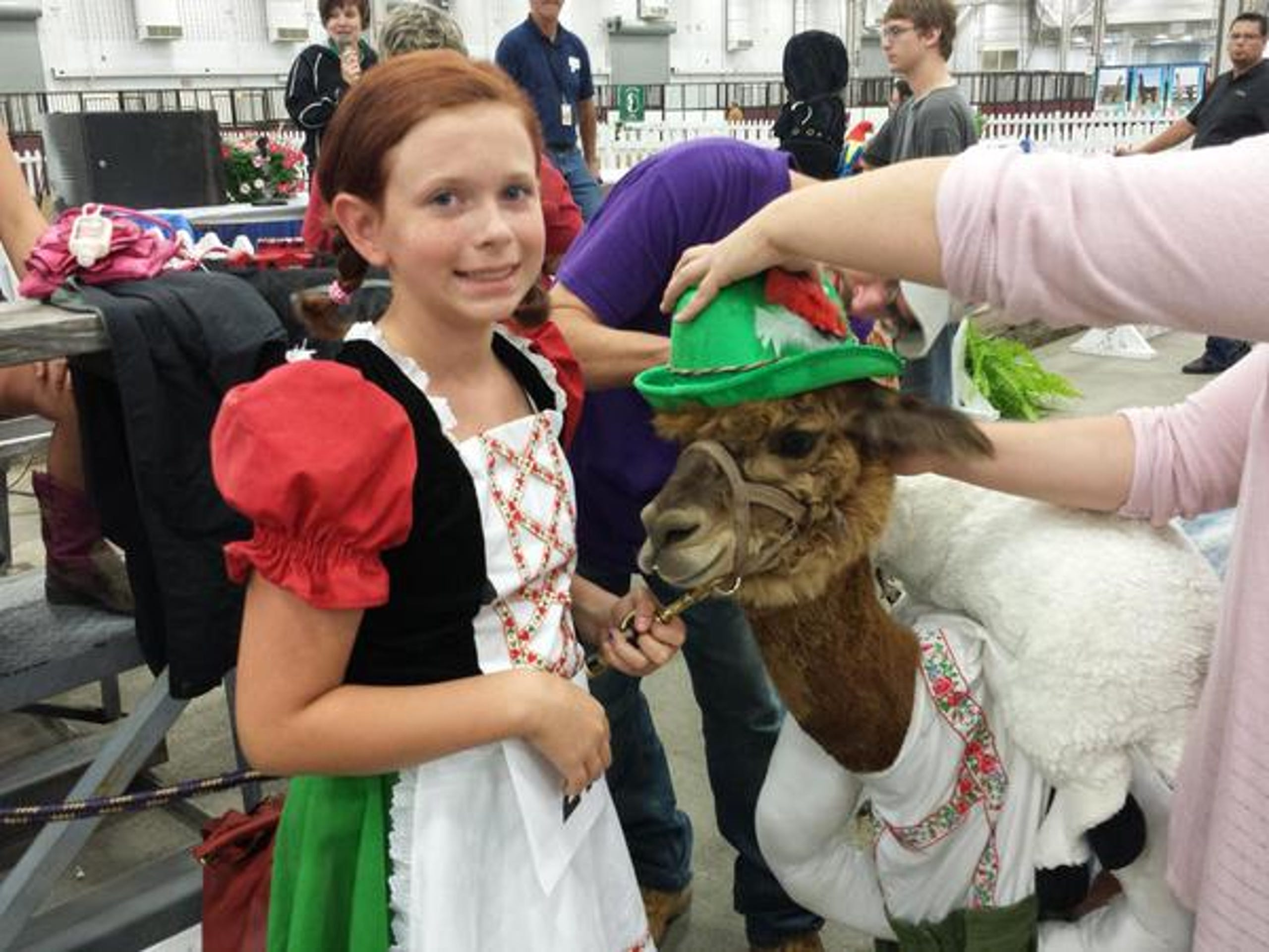 Llamas in costumes? It's an Indiana State Fair thing