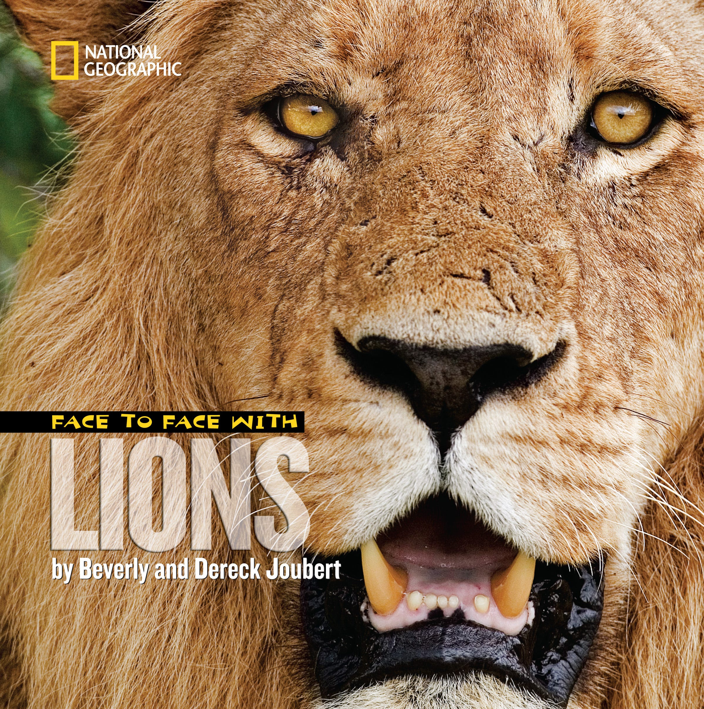 lion themed books help parents talk about cecil with kids