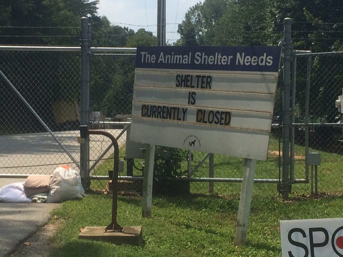 No Criminal Charges in Guilford County Animal Shelter