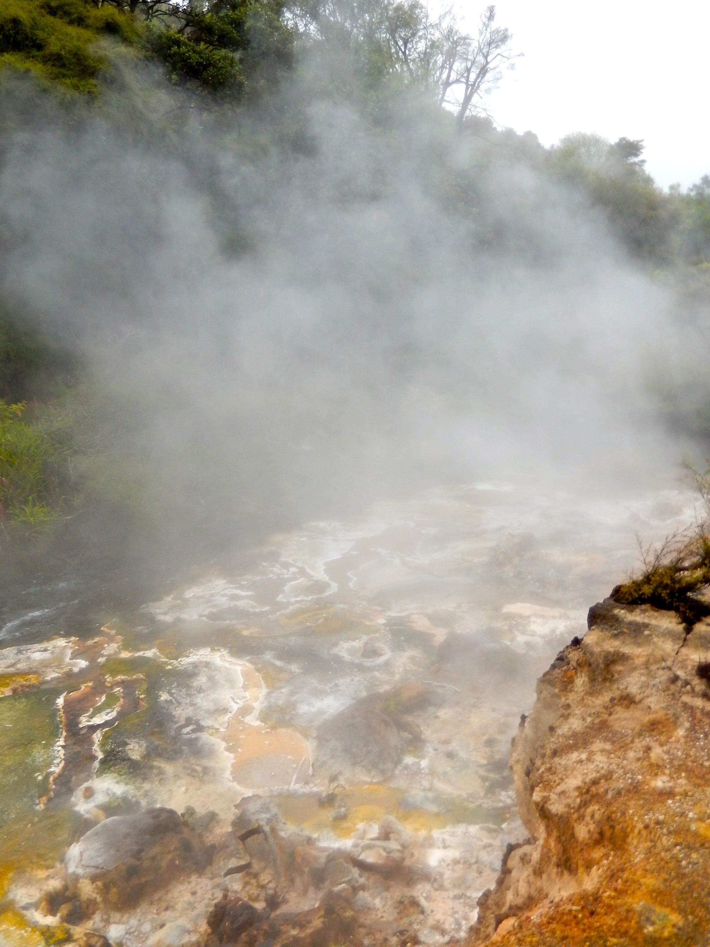 635789032893278651-Waimangu-Geothermal-System.jpg