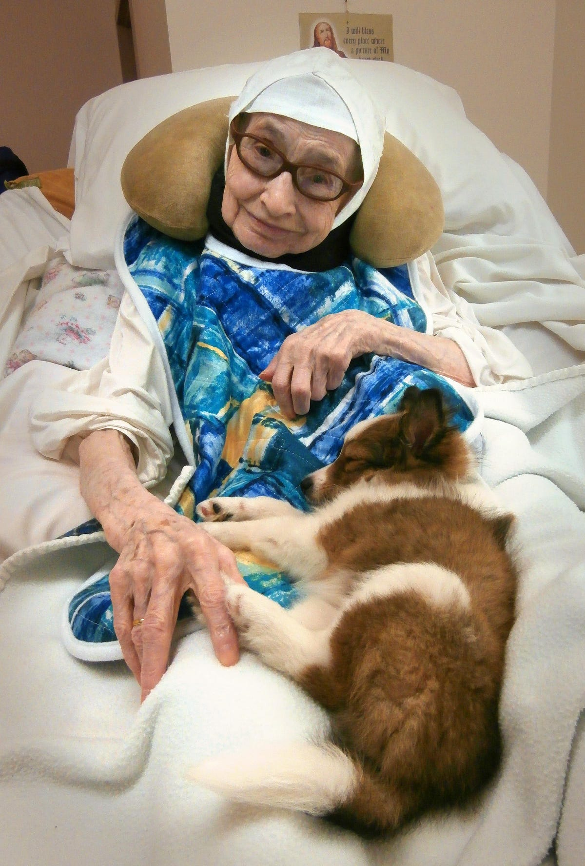 If you give a nun a puppy