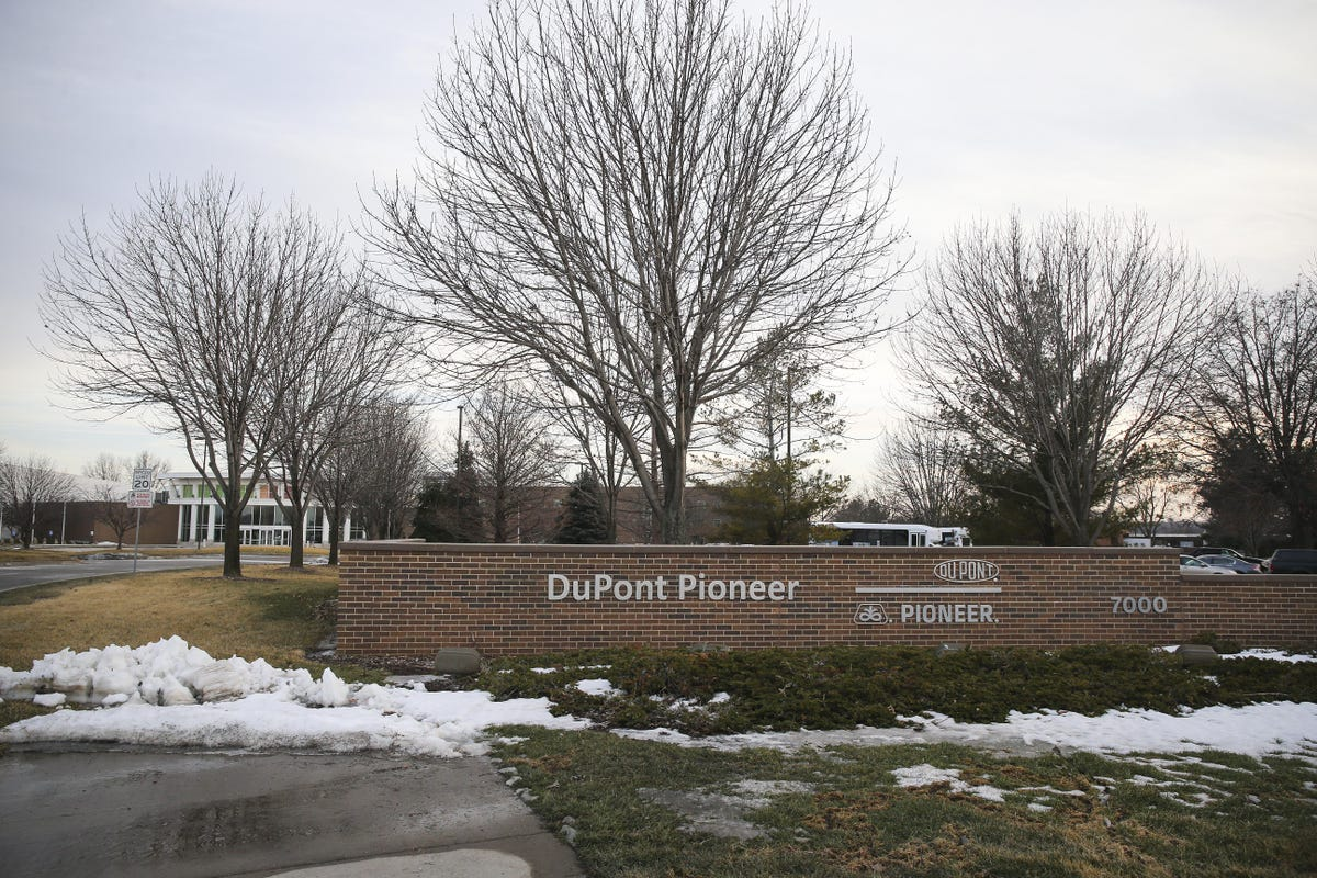 DuPont Pioneer will become Corteva Agriscience, DowDuPont says