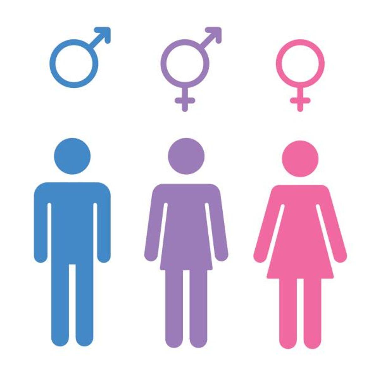 Terrific Marcus Two Sides To Transgender Bathroom Debate Download Free Architecture Designs Scobabritishbridgeorg