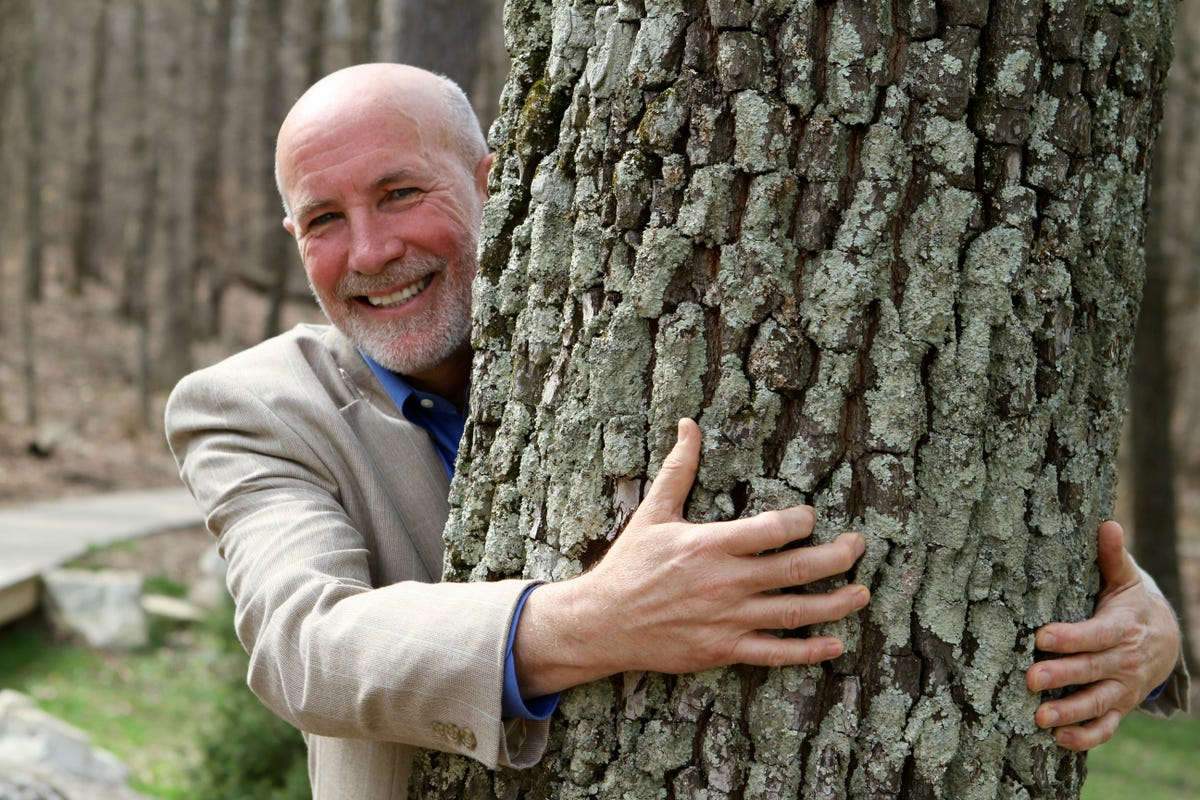 Image result for mark wourms forest under threat