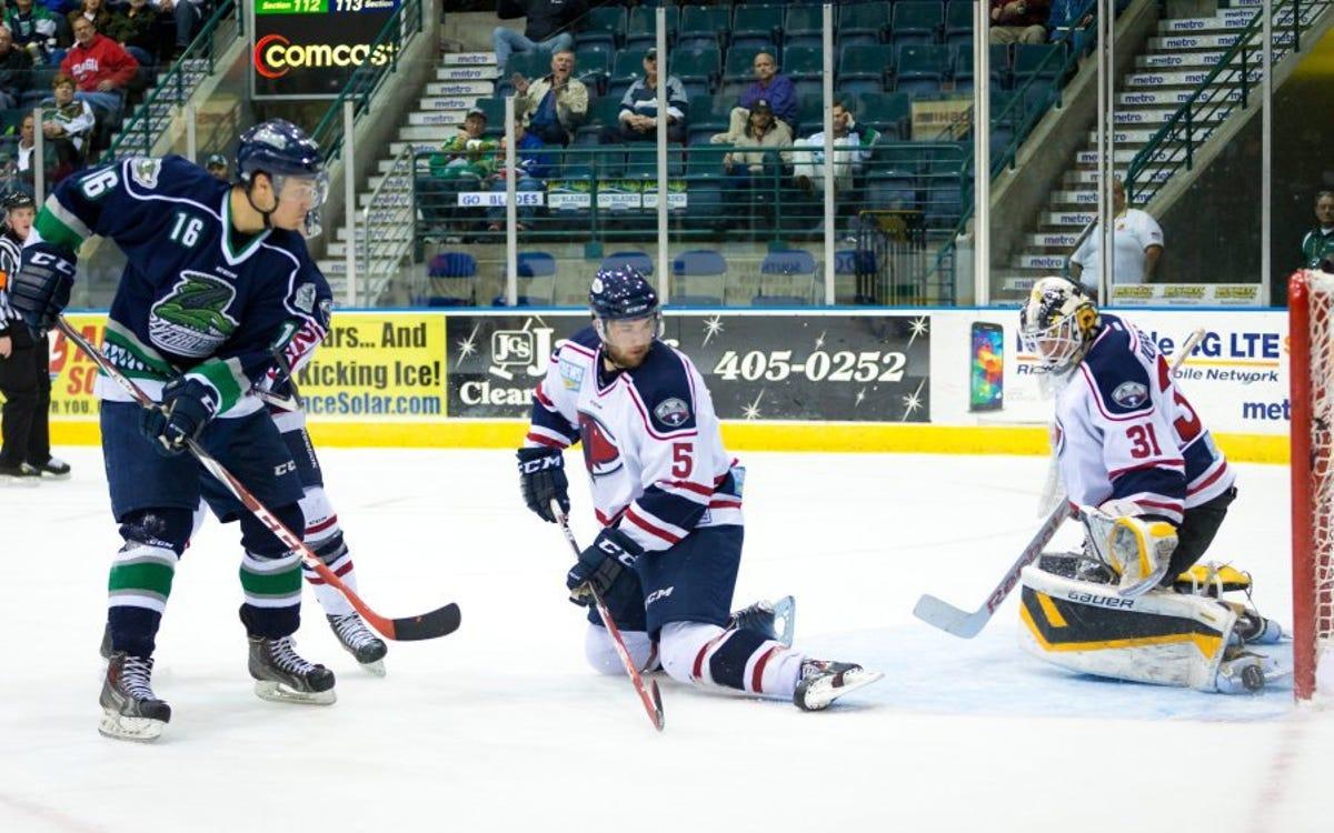 ECHL hockey: Florida Everblades sign Mike Aviani