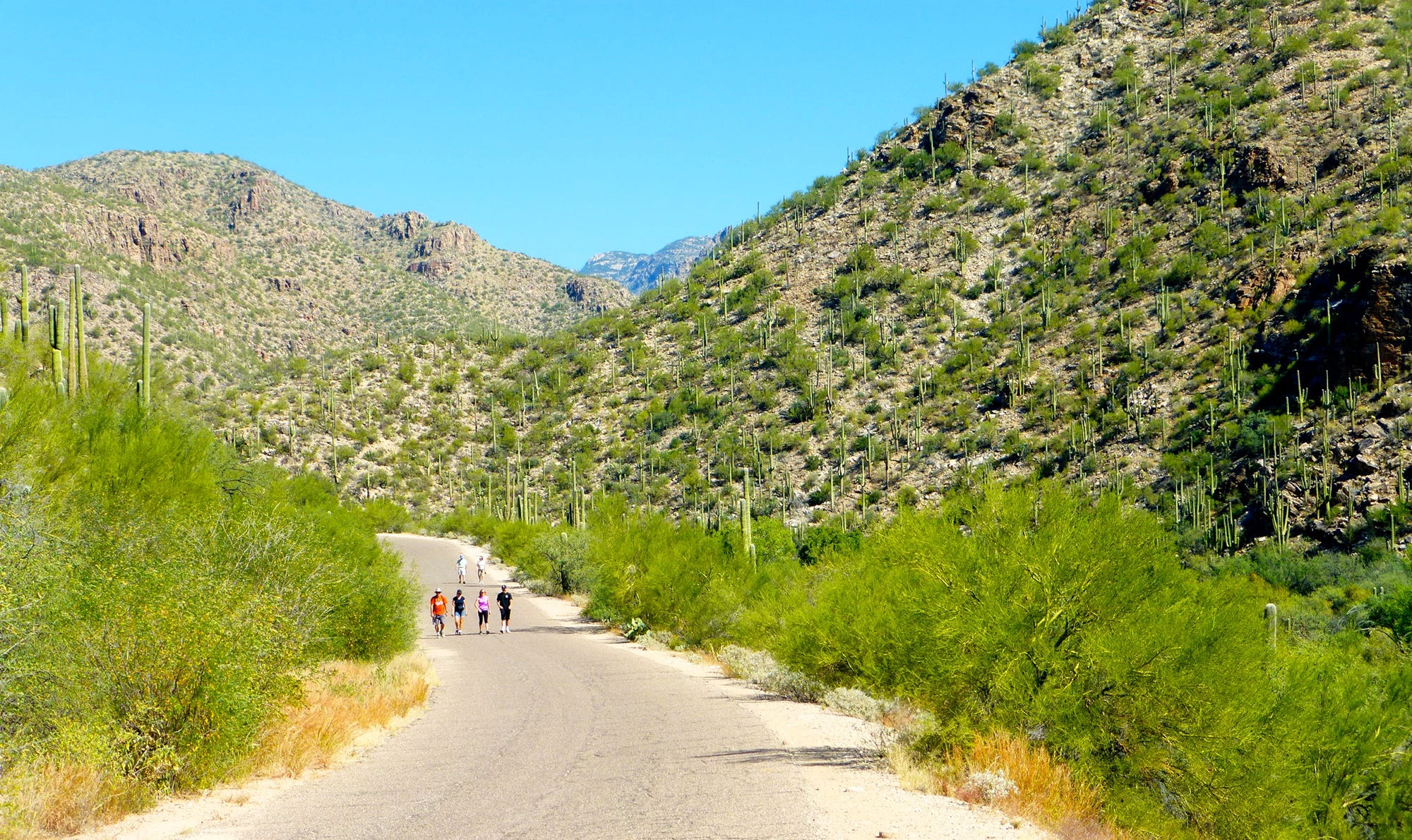 http://www azcentral com/picture-gallery/travel/arizona/hiking/2016/11