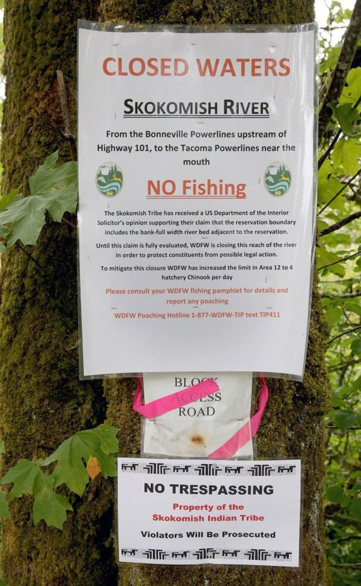 Lower Skokomish to remain closed to anglers