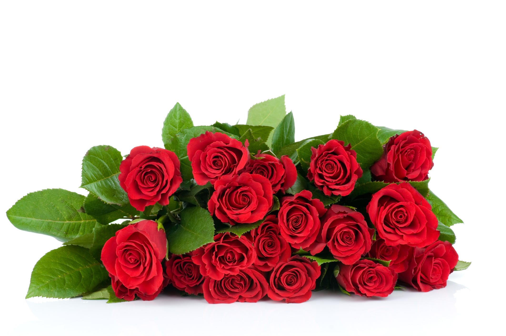 January Is the best time to order roses for Valentine's Day