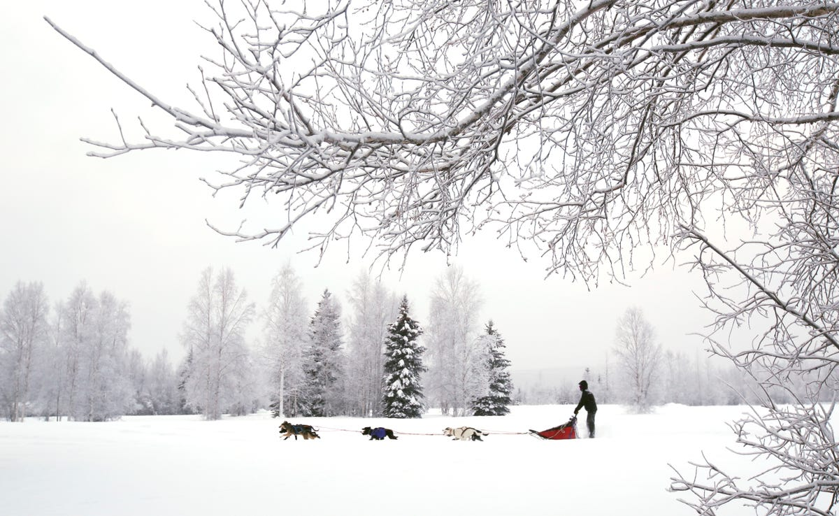 It's so cold in Alaska that even Alaskans are complaining