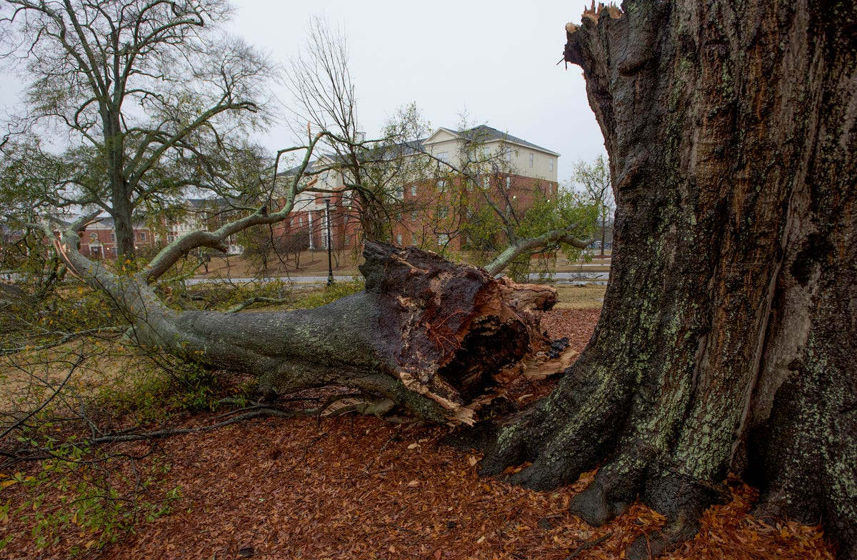 Update: 17 tornadoes hit central Alabama, 3 in River Region