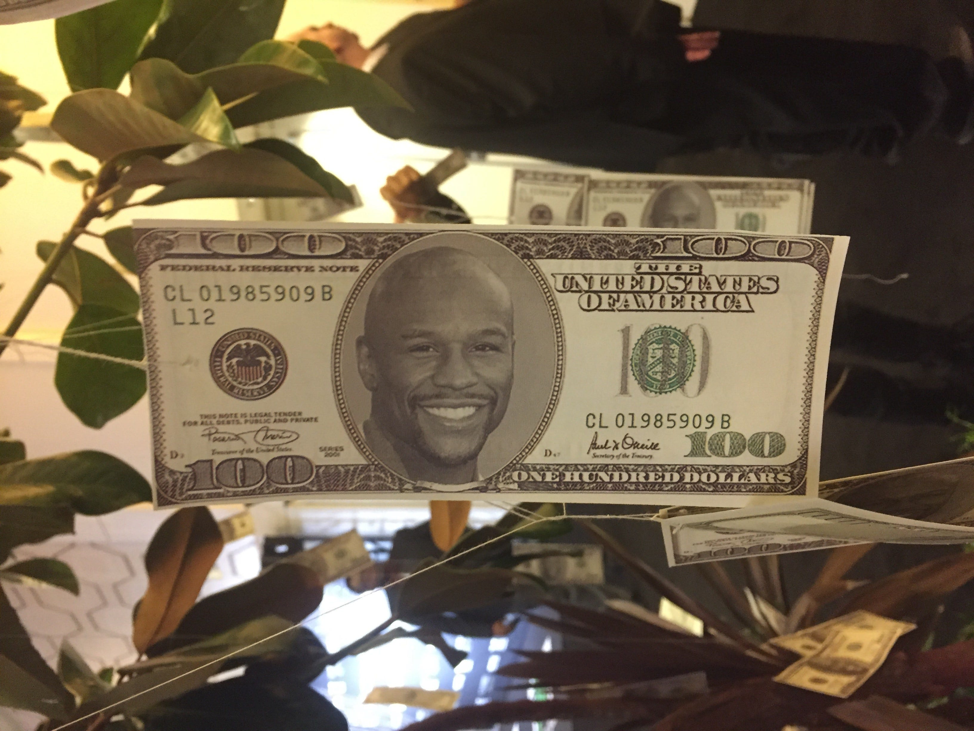 Floyd Mayweather's 40th birthday party features 'money' tree and Siberian tigers