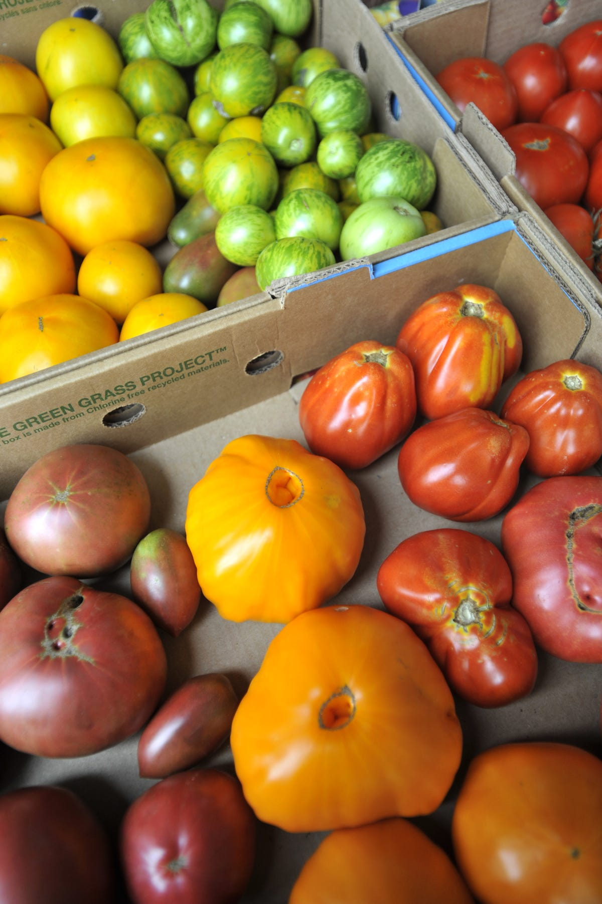 Saving food from waste by the truckload