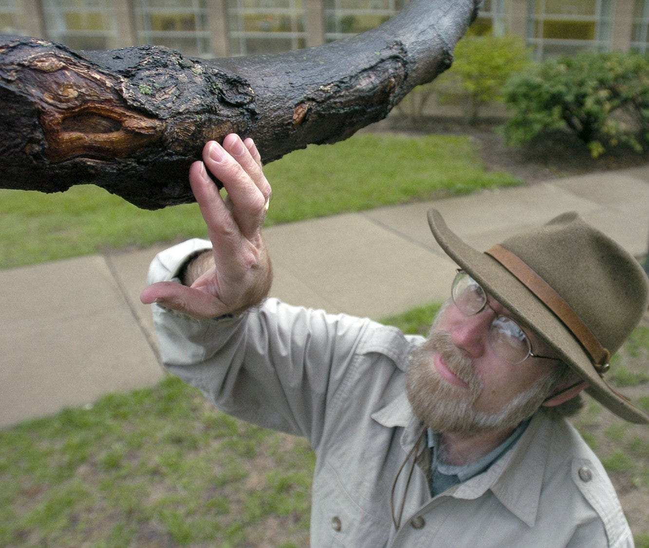 Mount St. Joseph College professor Gene Kritsky is the one of the country's foremost authorities on cicadas. He has been studying the insects for decades.