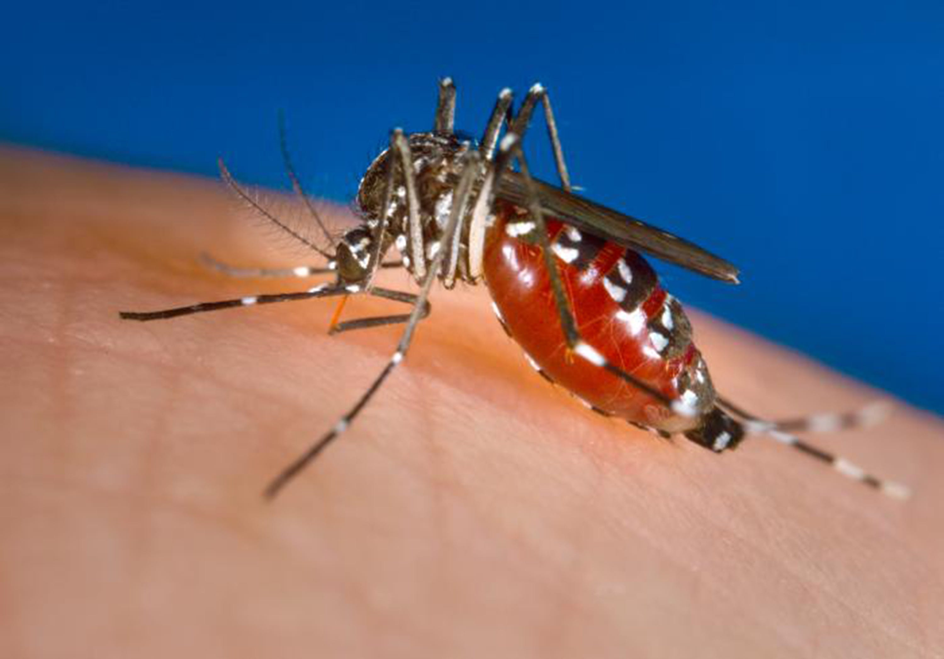 Spike in infectious disease collides with changing climate