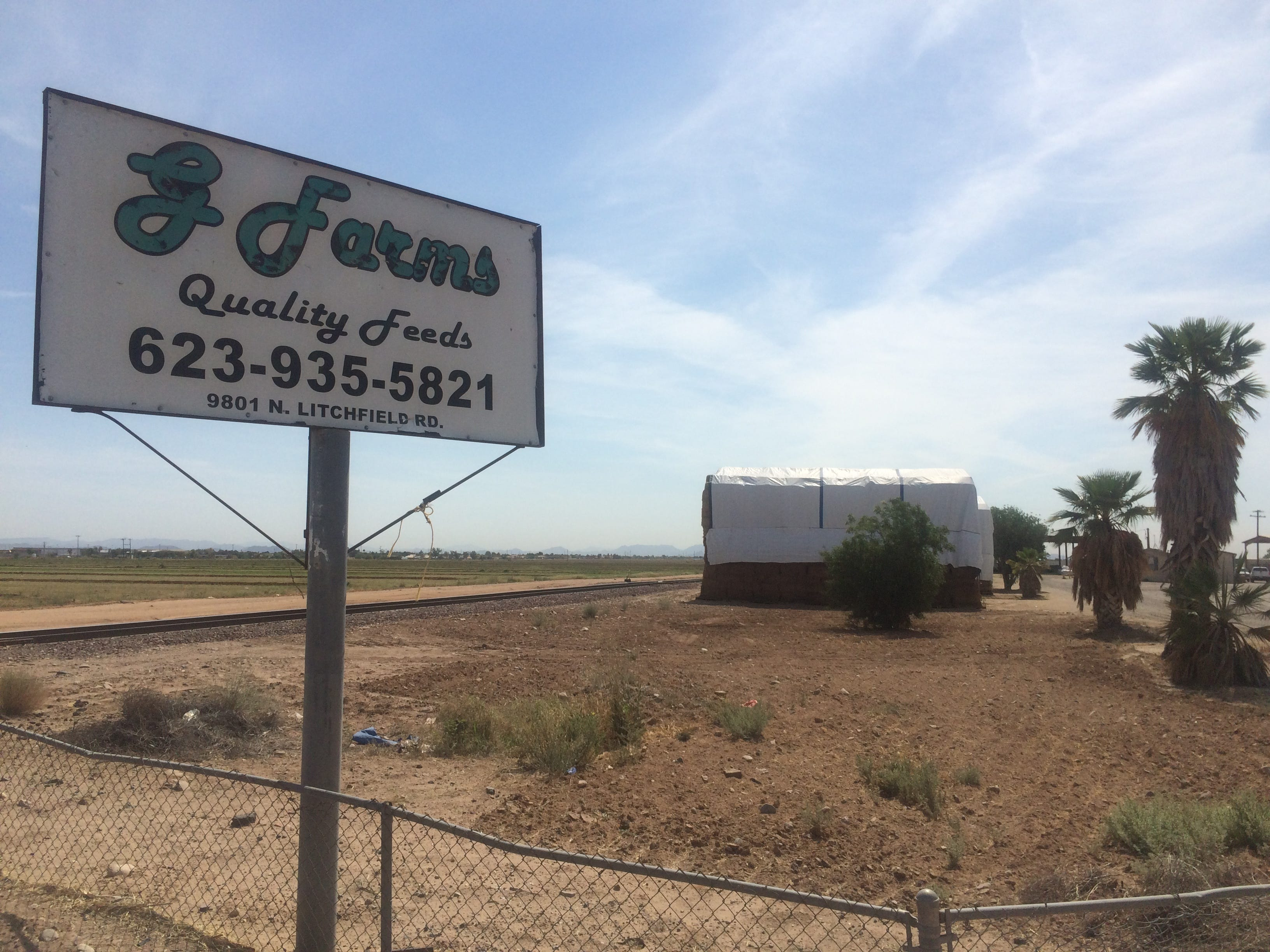 'Inhumane' Phoenix-area farm? Employees: 'What we want is to work'