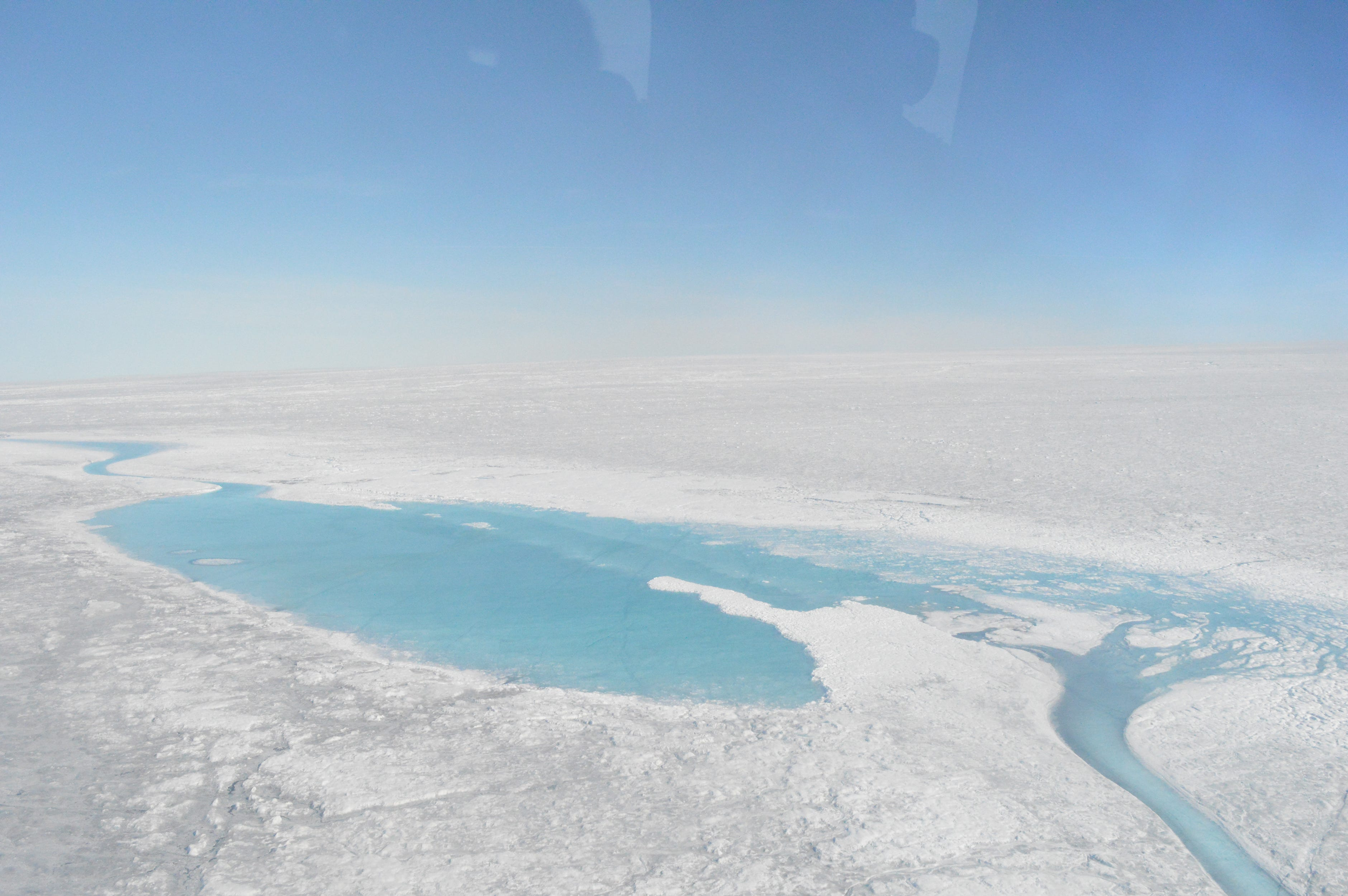 Algae are turning Greenland green — and that's a problem for sea-level rise
