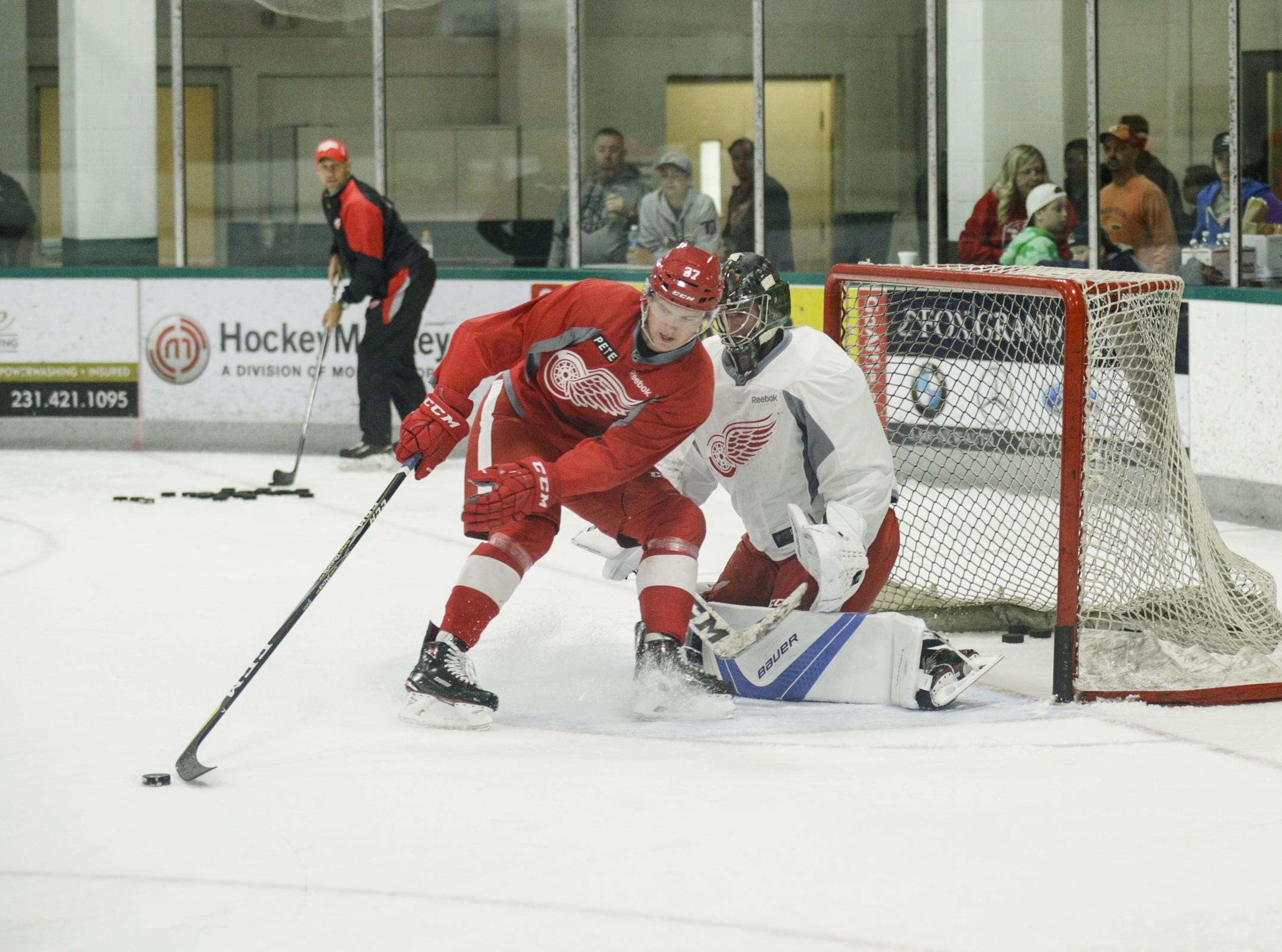5 Red Wings make ESPN's top 100 NHL prospects