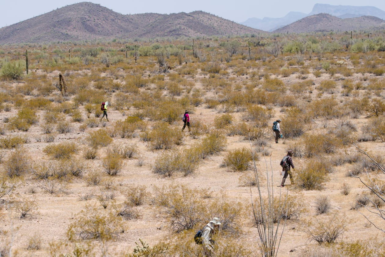 Border Crossers And The Desert That Claims Them