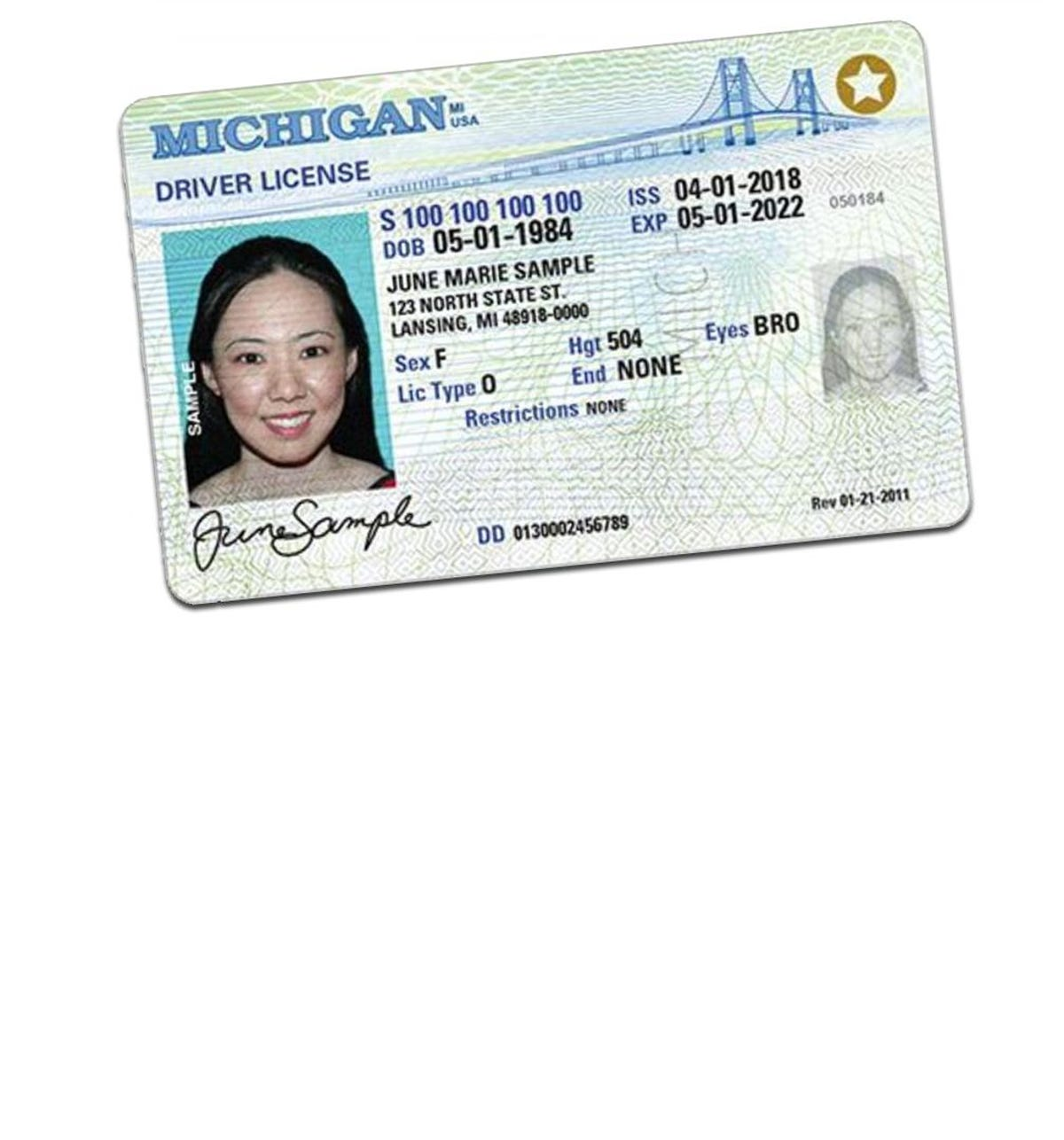 michigan drivers license mailing status