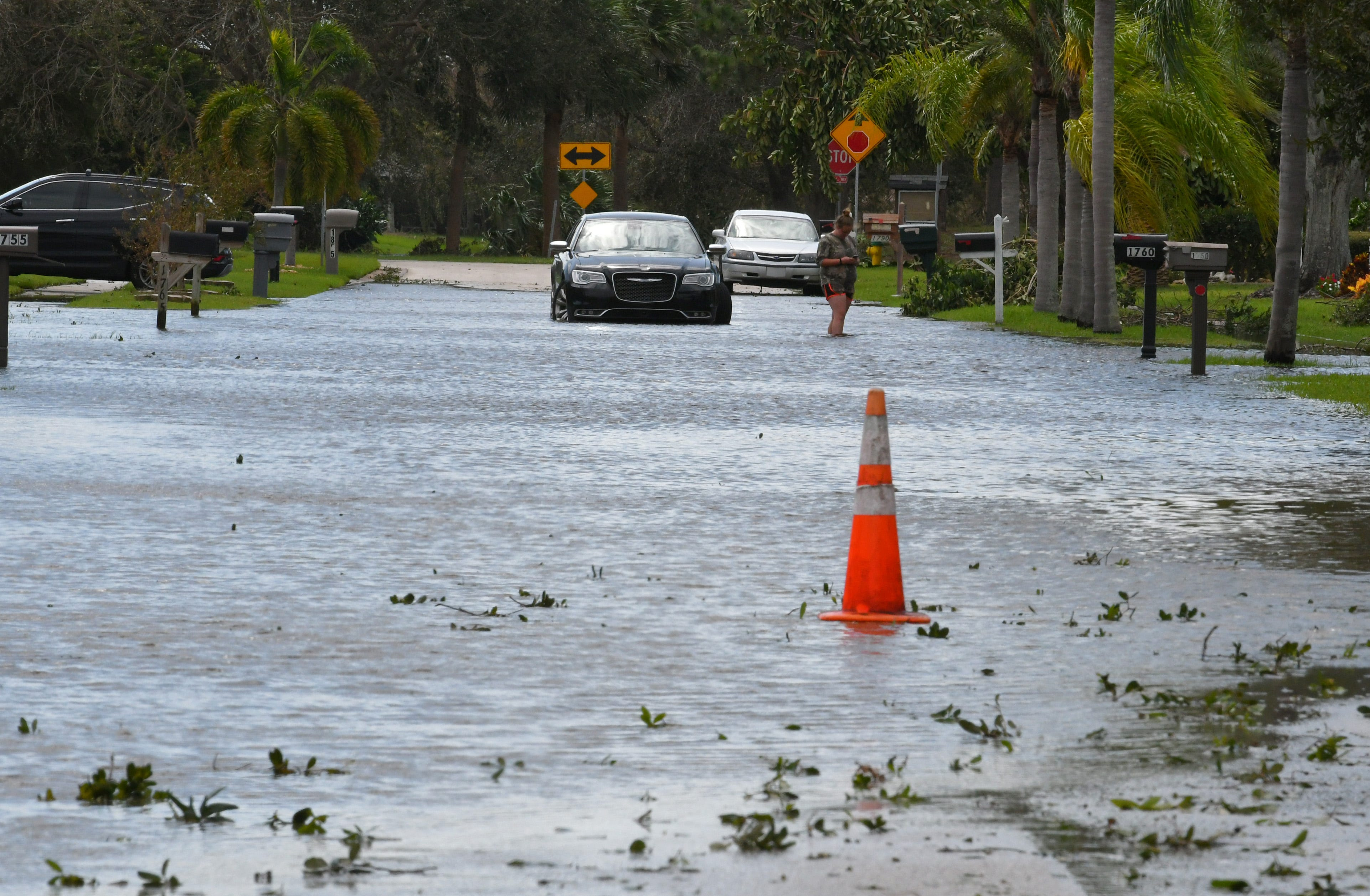 http://www.floridatoday.com/picture-gallery/weather/hurricanes/2017 ...