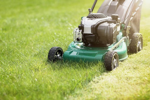 Mississippi man beat neighbor over lawn mowing job, police say   Clarion Ledger