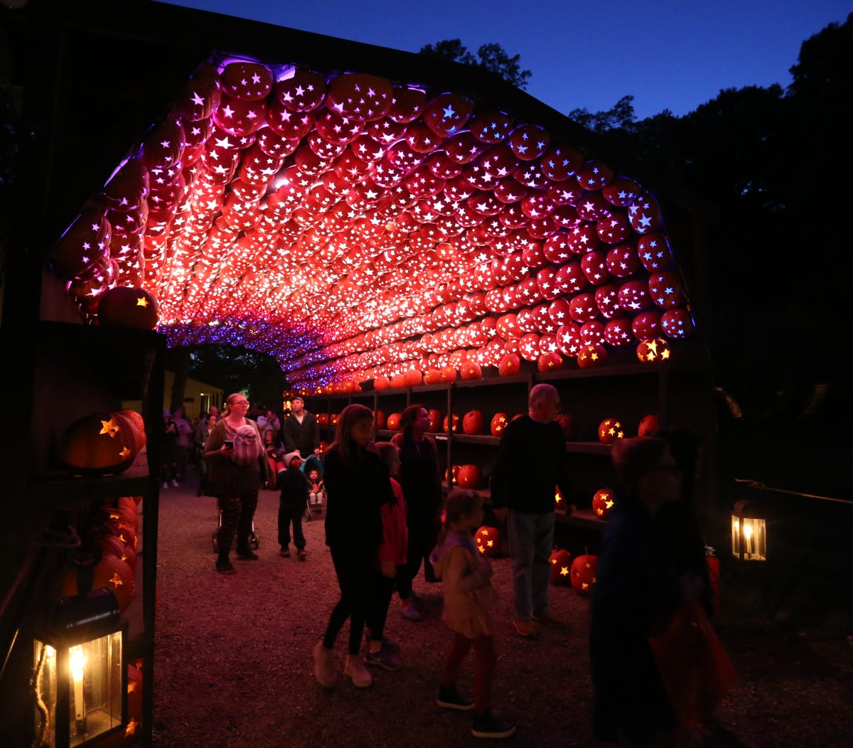 Tickets to The Great Jack O' Lantern Blaze on sale Aug  21