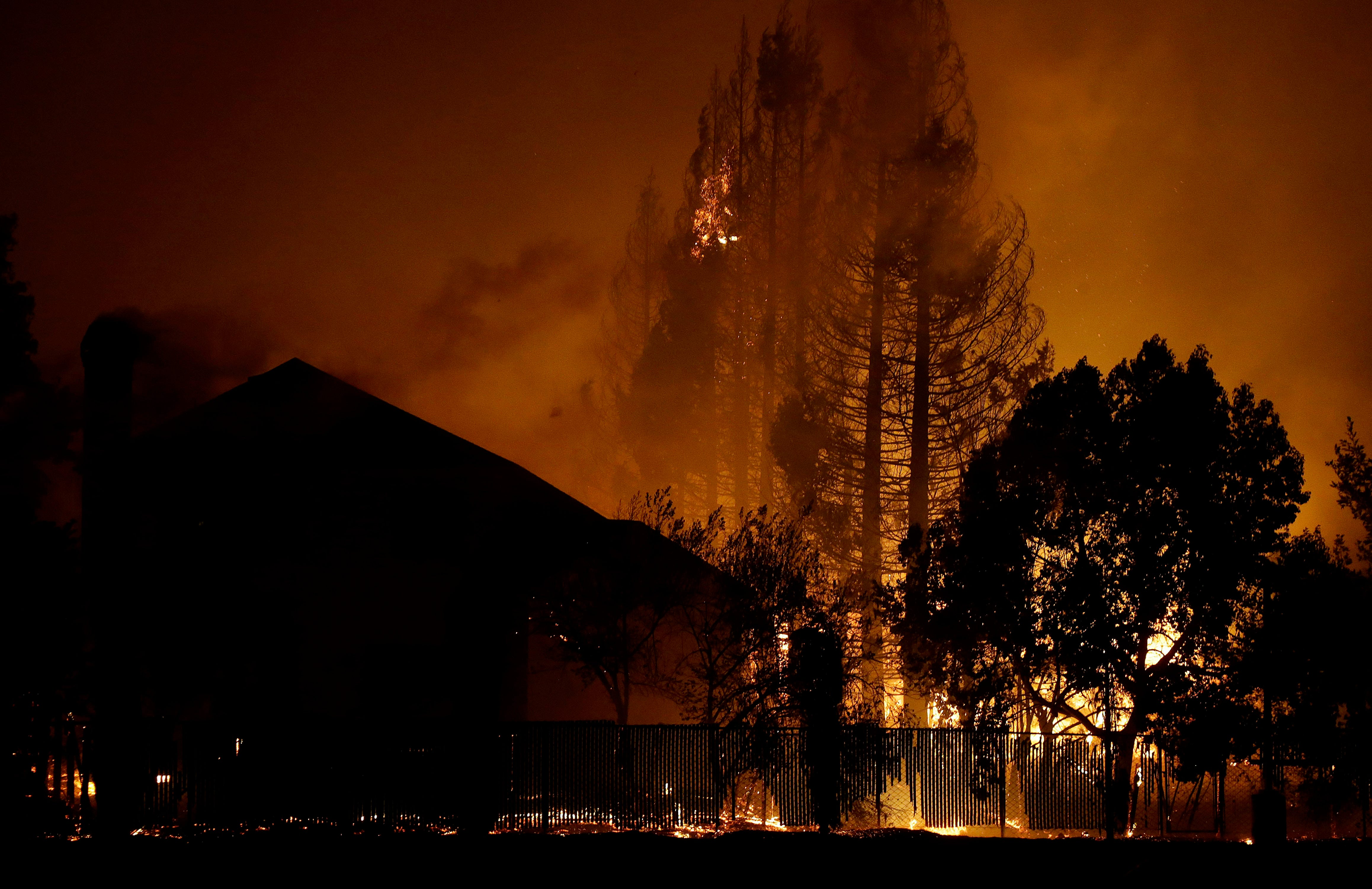 Trees burn behind houses in a residential area in Santa Rosa, Calif., Monday, Oct. 9, 2017.