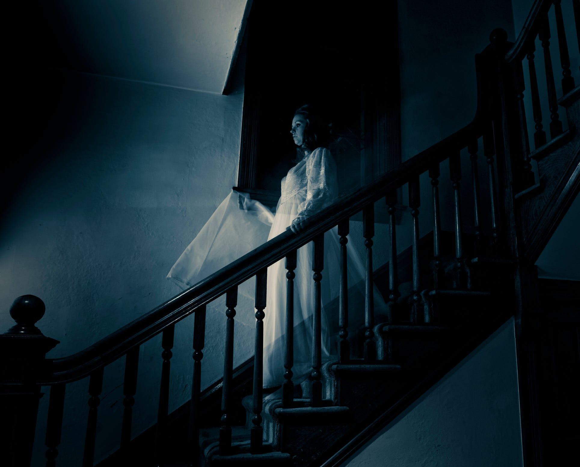 призраки картинки с призраками защитники животных борятся