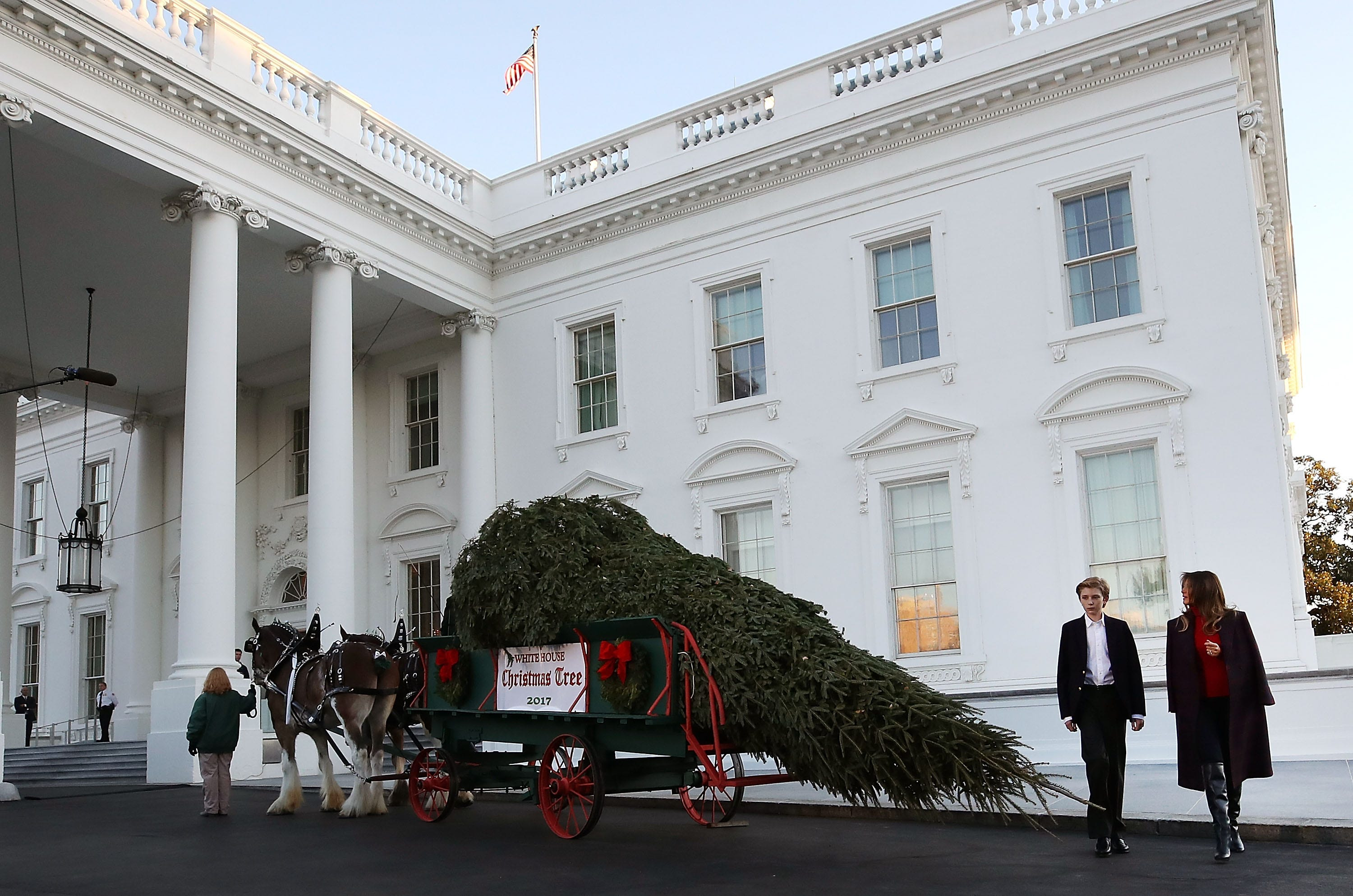 on display the white house christmas tree usa today 1708 pm et november 20 - House Without A Christmas Tree