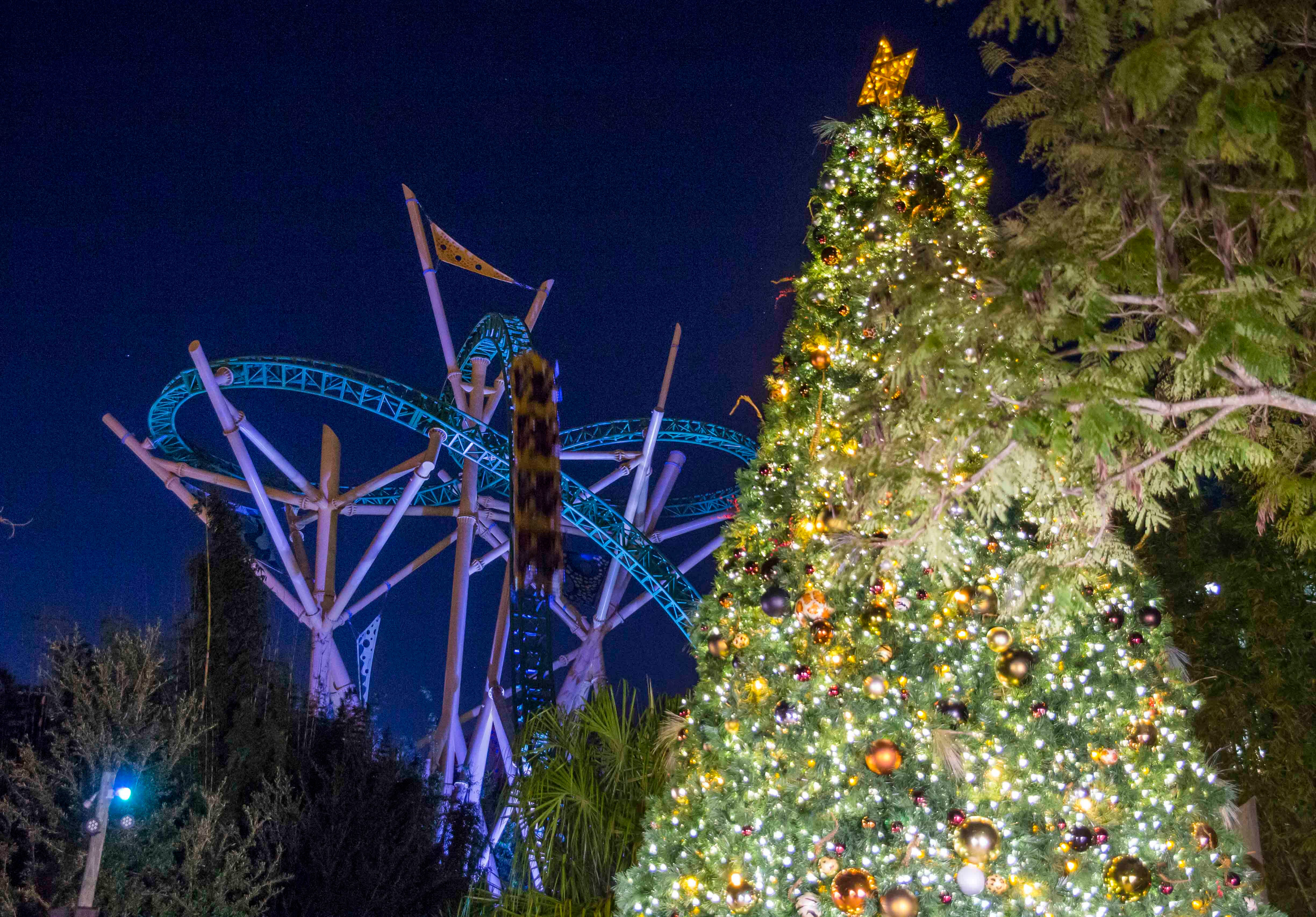 Holiday Events Add A Warm Glow To Chilly Theme Parks Ksdk Com