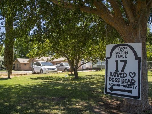 Sen. Jeff Flake's son appeals dismissal of malicious-prosecution suit in dog kennel deaths | AZ Central