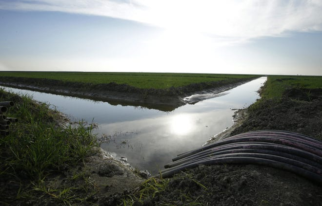 FILE - In this Feb. 25, 2016 file photo, water flows through an irrigation canal to crops near Lemoore.