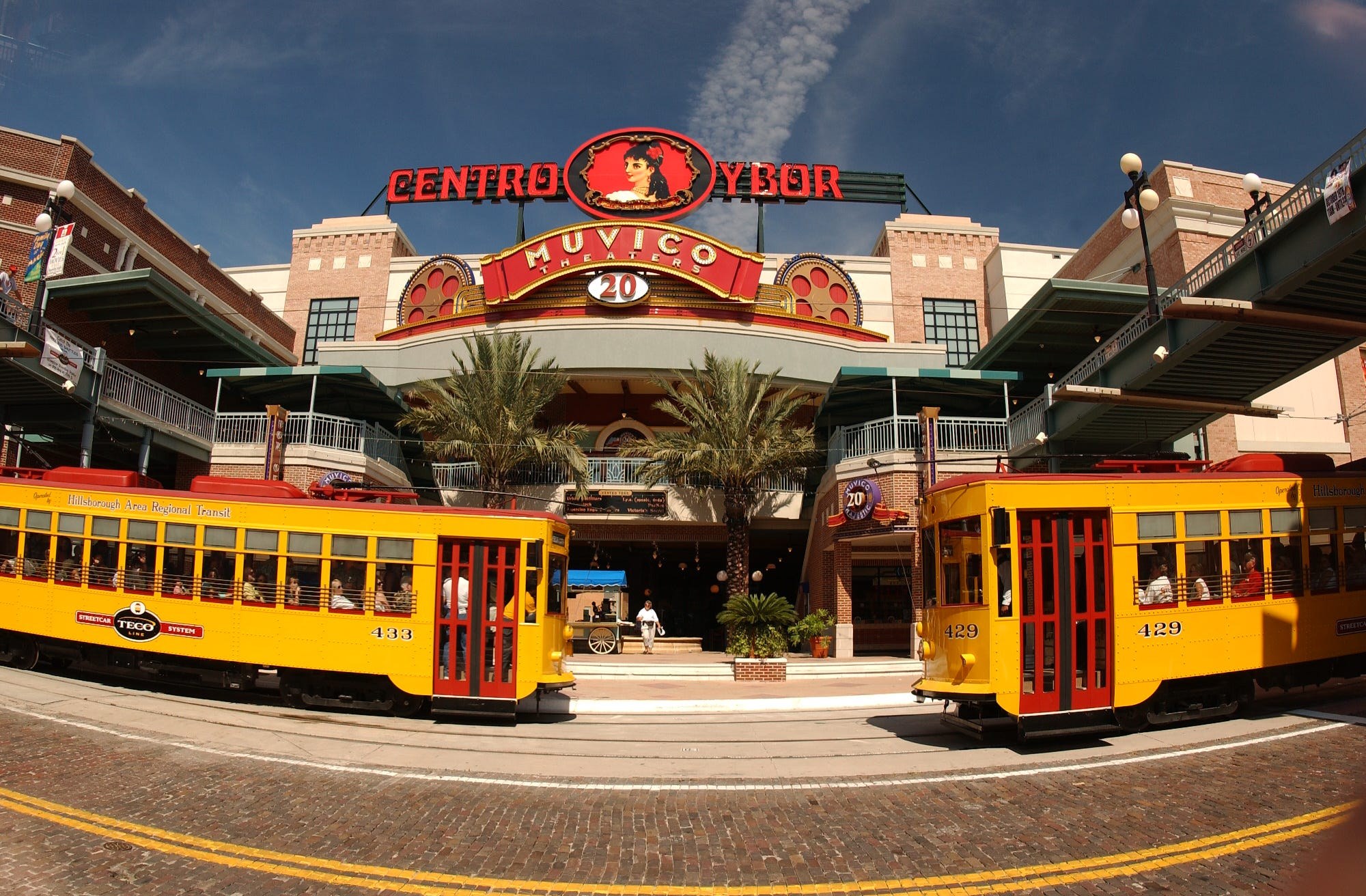 Florida bucket list: 20 things you have to do in the Sunshine State   USA Today